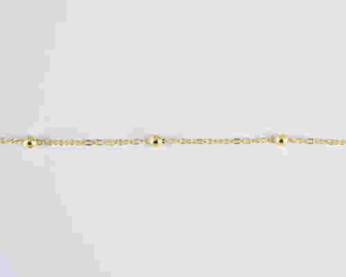 Optostirixis_Alysides_7020316.S