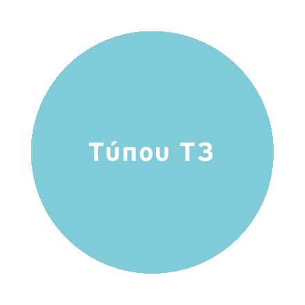 Τύπου Τ3