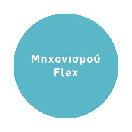 Μηχανισμού Flex